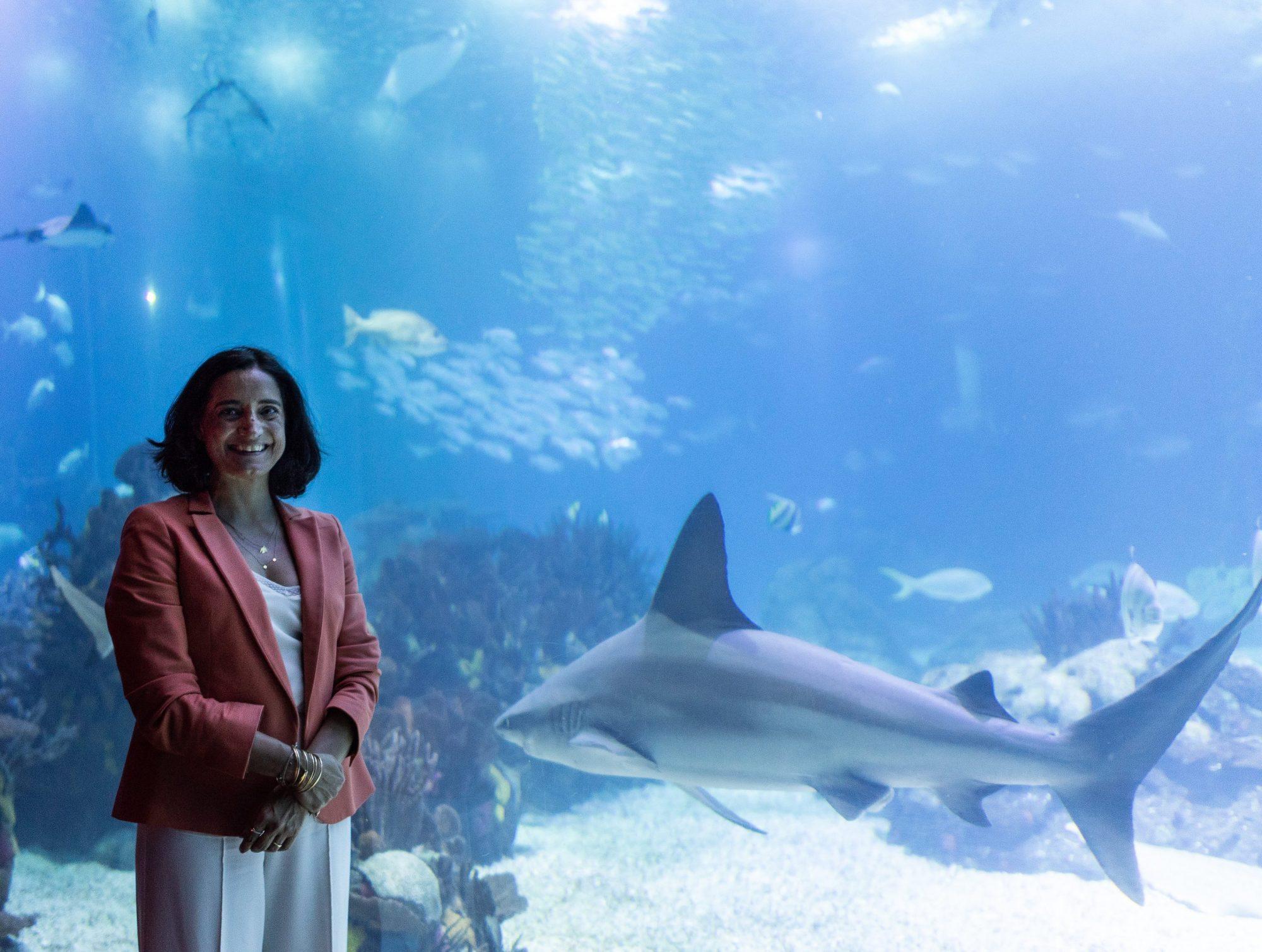 FOA 17 maio 2018_me and shark